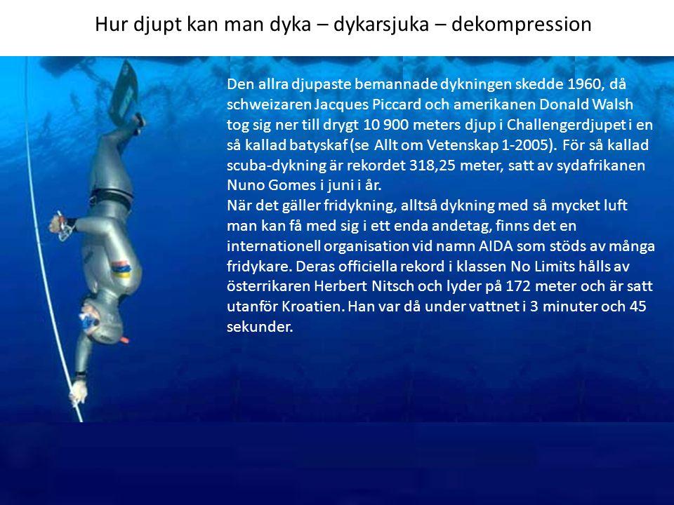 Hur djupt kan man dyka – dykarsjuka – dekompression Den allra djupaste bemannade dykningen skedde 1960, då schweizaren Jacques Piccard och amerikanen