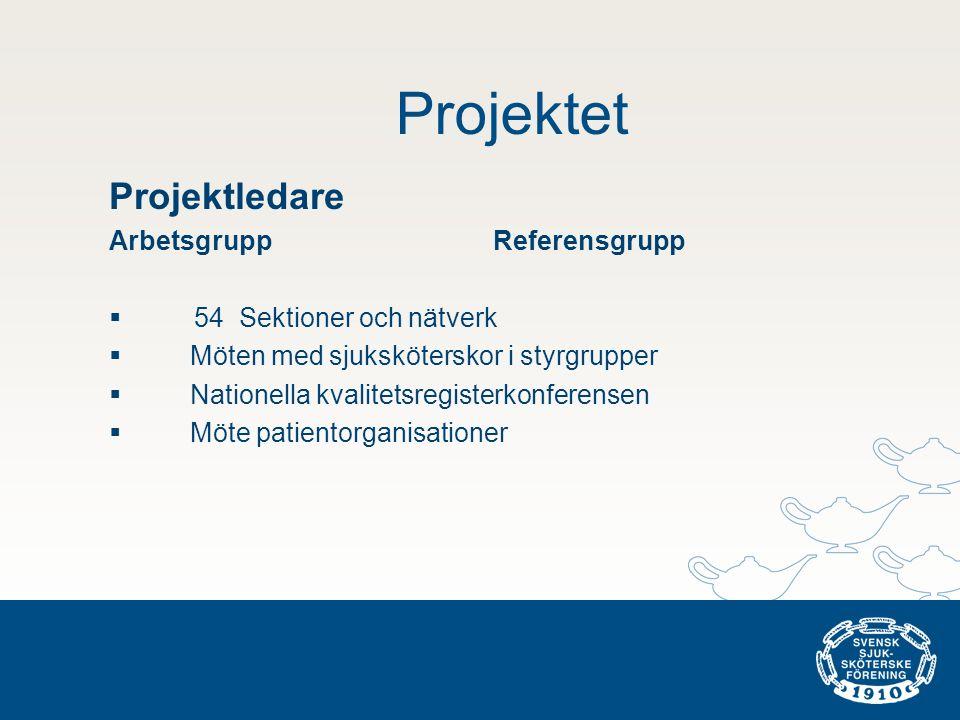 Projektet Projektledare Arbetsgrupp Referensgrupp  54 Sektioner och nätverk  Möten med sjuksköterskor i styrgrupper  Nationella kvalitetsregisterkonferensen  Möte patientorganisationer