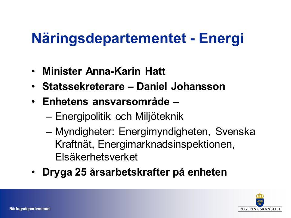 Näringsdepartementet Marknad & infrastruktur •Elmarknad •Naturgasmarknad •Fjärrvärme •Energimarknads- inspektionen •Svenska kraftnät •Elsäkerhetsverket •Elsäkerhet •Elberedskap •Dammsäkerhet •Koncessioner Gruppchef: Magnus Blümer Hållbart & tryggt energisystem •Budgetsamordning •Energimyndigheten •Energiforskning •Energieffektivisering •Förnybar energi •Smarta elnät •Elcertifikat •Hållbarhetskriterier •Energianvändning i transporter •Miljöteknik •Oljeberedskap •Kärnkraft Gruppchef: Bengt Toresson Internationellt och samordning •Internationell samordning •EU-samordning •IEA-samordning •Samordning av bilaterala samarbeten •Klimat- och miljösamordning •Generella styrmedel som skatter och utsläppshandel Gruppchef: Sara Emanuelsson Enhetschef och assistenter Sekretariat för internationellt miljöteknikarbete Leds av Mats Denninger