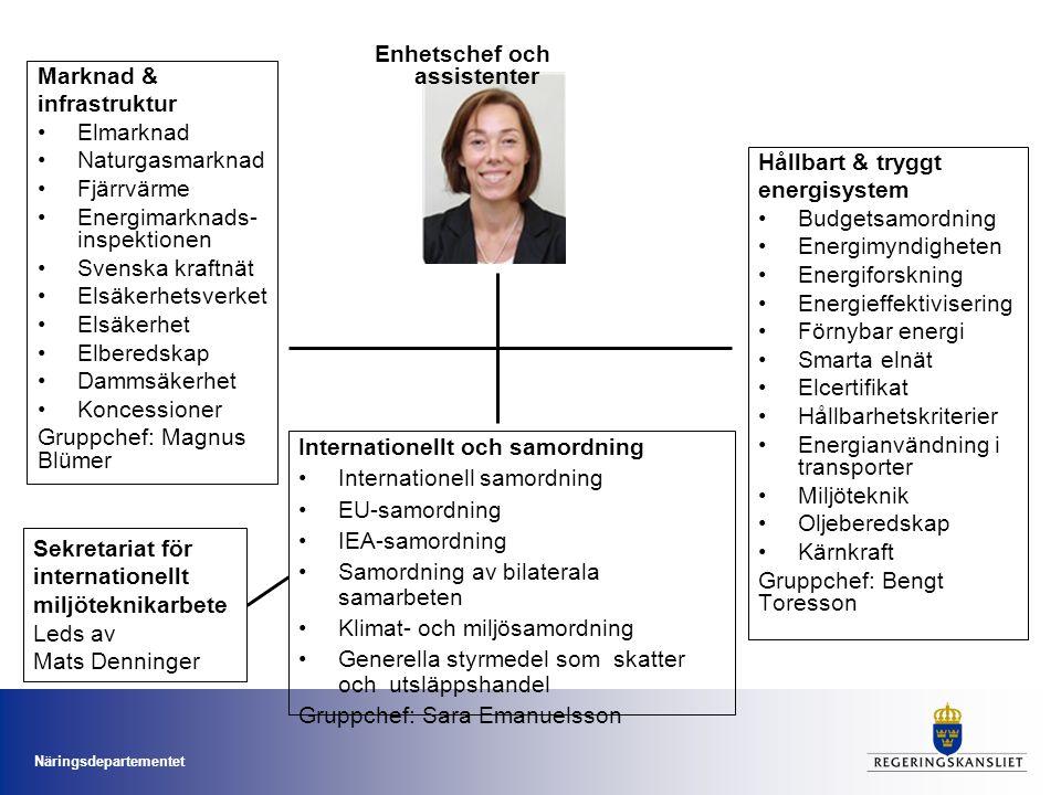 Näringsdepartementet Marknad & infrastruktur •Elmarknad •Naturgasmarknad •Fjärrvärme •Energimarknads- inspektionen •Svenska kraftnät •Elsäkerhetsverke