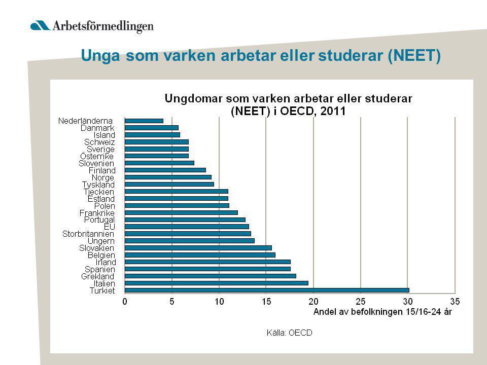Unga som varken arbetar eller studerar i Sverige Vi har identifierat unga som: •har inga eller mycket låga förvärvsinkomster och som inte studerar •Unga i åldrarna 16-29 år •Åren som undersöks är 2008, 2009 och 2010.