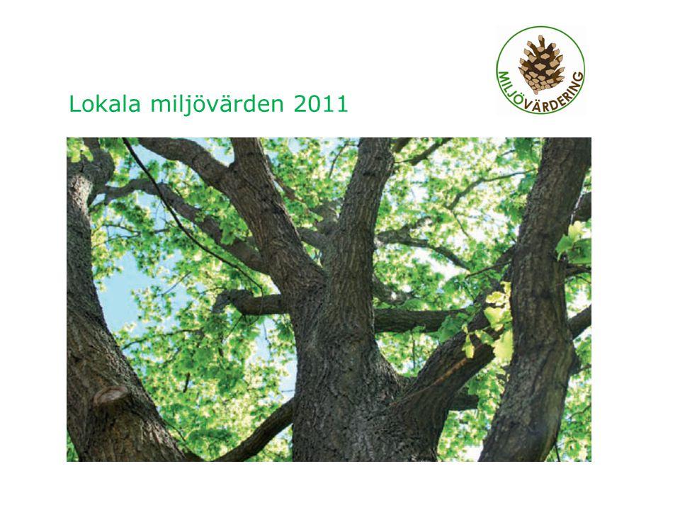 Lokala miljövärden 2011 2011-12-012 Den energi som man använder har framställts på olika sätt.