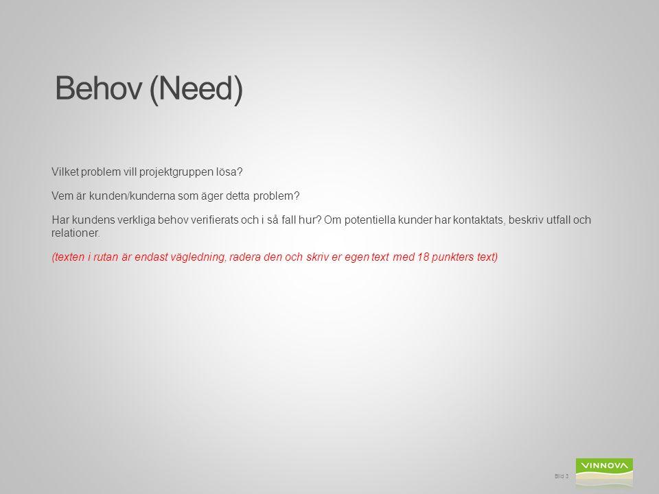 Vilket problem vill projektgruppen lösa. Vem är kunden/kunderna som äger detta problem.