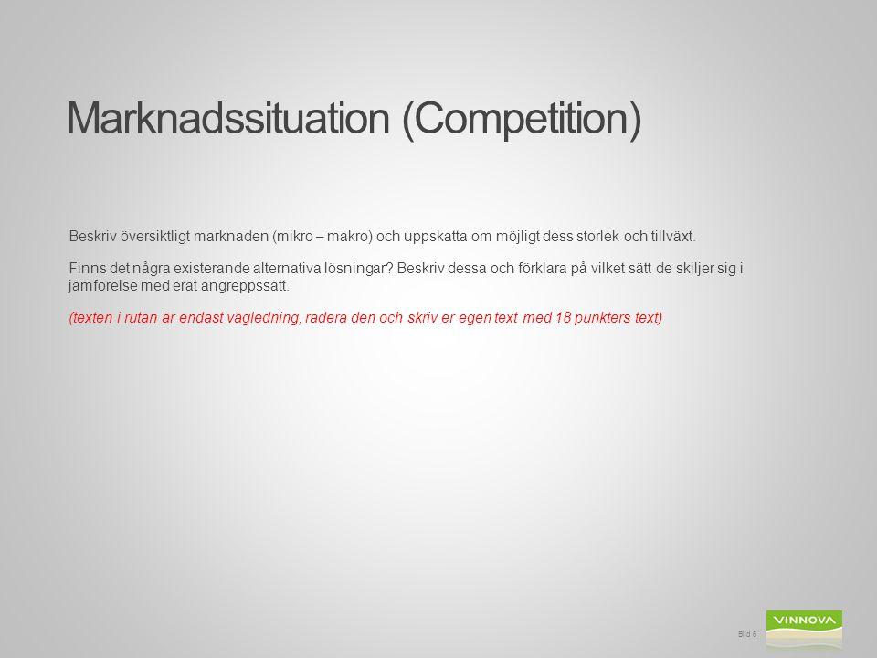 Marknadssituation (Competition) Beskriv översiktligt marknaden (mikro – makro) och uppskatta om möjligt dess storlek och tillväxt. Finns det några exi