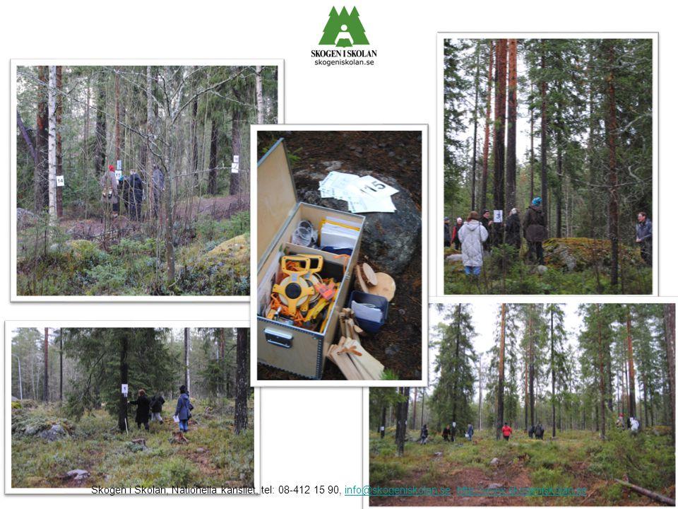 Skogen i Skolan, Nationella kansliet, tel: 08-412 15 90, info@skogeniskolan.se, http://www.skogeniskolan.seinfo@skogeniskolan.sehttp://www.skogeniskol