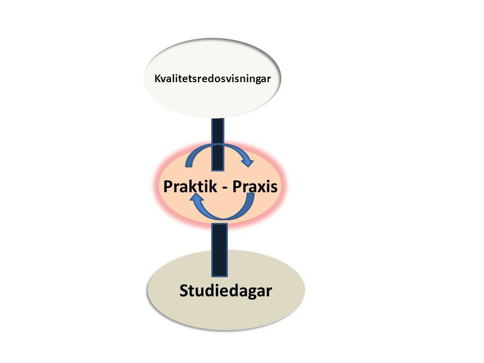 Studiedagar Praktik - Praxis Kvalitetsredosvisningar