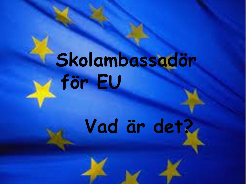 Vad innebär det? Skolambassadör för EU Vad är det?