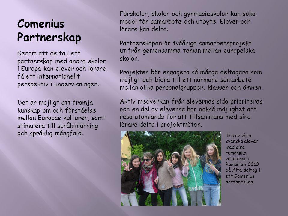 Comenius Partnerskap Genom att delta i ett partnerskap med andra skolor i Europa kan elever och lärare få ett internationellt perspektiv i undervisnin