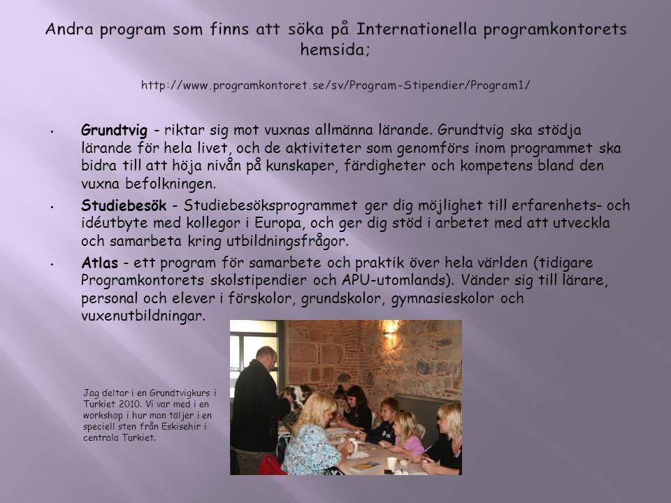 • Grundtvig - riktar sig mot vuxnas allmänna lärande. Grundtvig ska stödja lärande för hela livet, och de aktiviteter som genomförs inom programmet sk