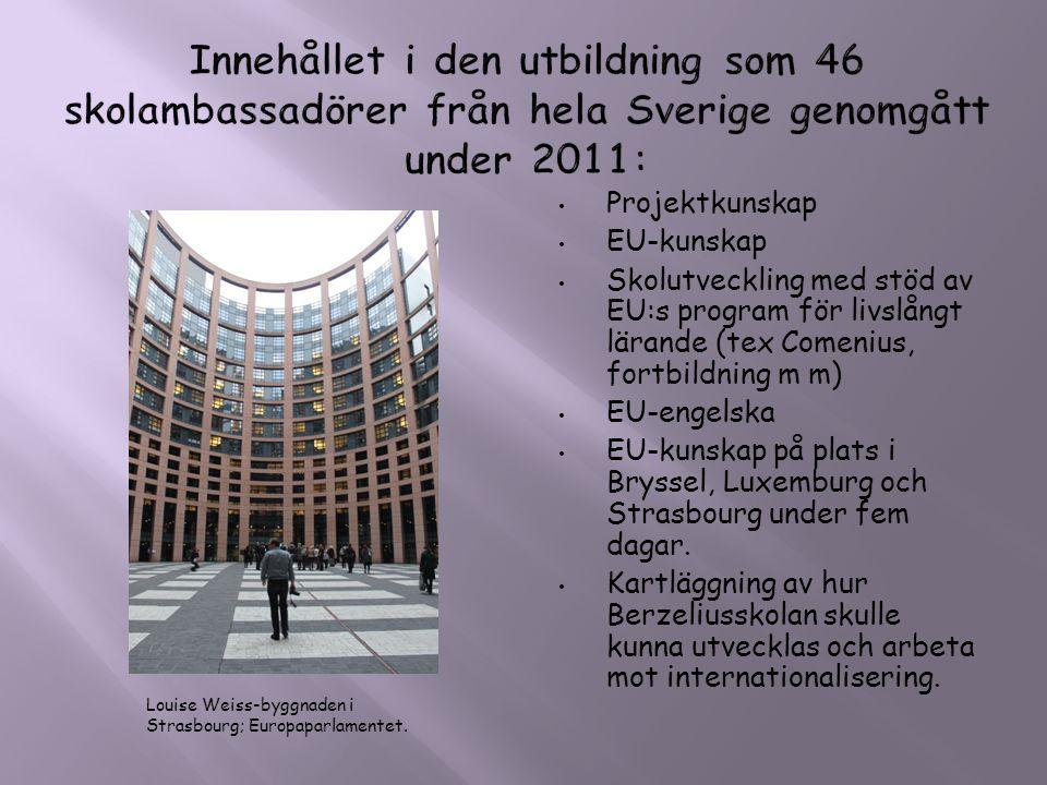 • Projektkunskap • EU-kunskap • Skolutveckling med stöd av EU:s program för livslångt lärande (tex Comenius, fortbildning m m) • EU-engelska • EU-kuns