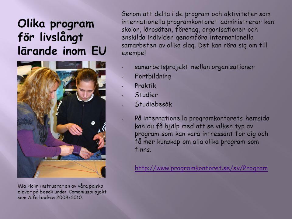 Olika program för livslångt lärande inom EU Mia Holm instruerar en av våra polska elever på besök under Comeniusprojekt som Alfa bedrev 2008-2010. Gen