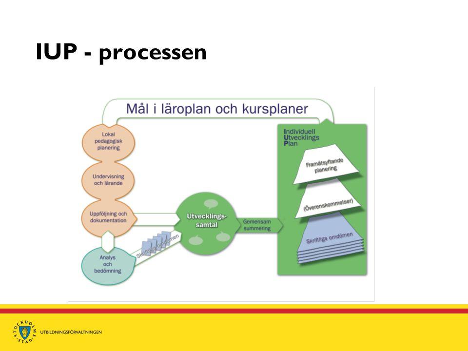 IUP - processen