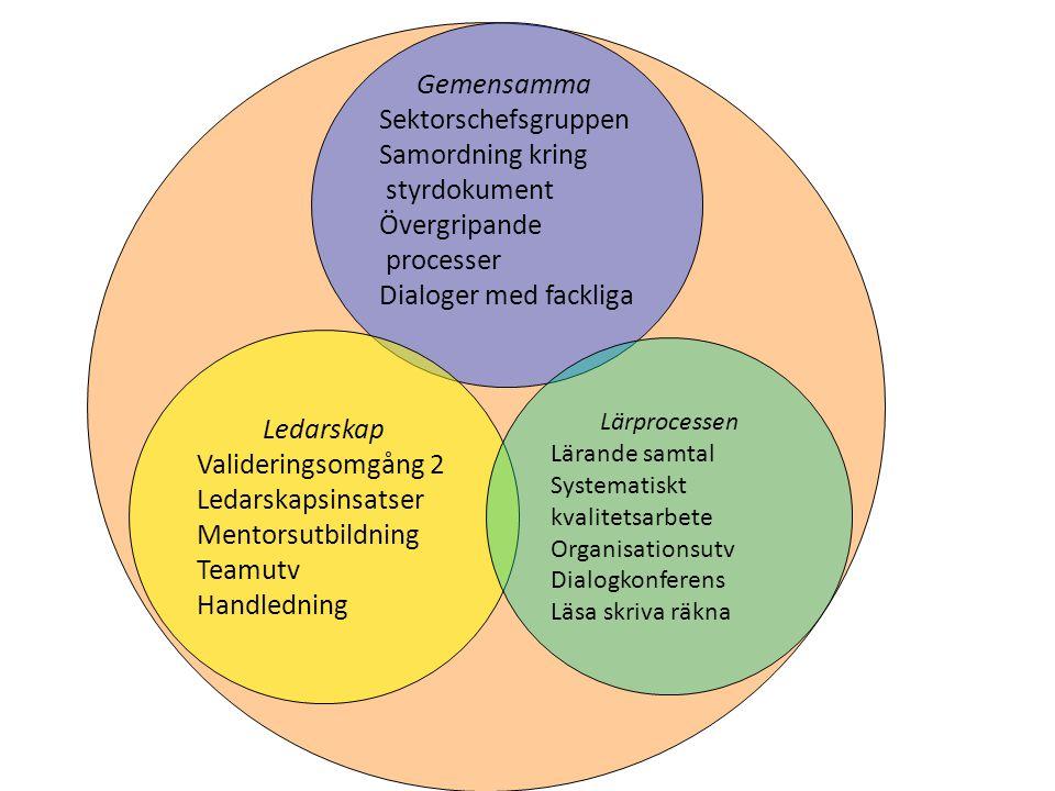 Gemensamma Sektorschefsgruppen Samordning kring styrdokument Övergripande processer Dialoger med fackliga Ledarskap Valideringsomgång 2 Ledarskapsinsa