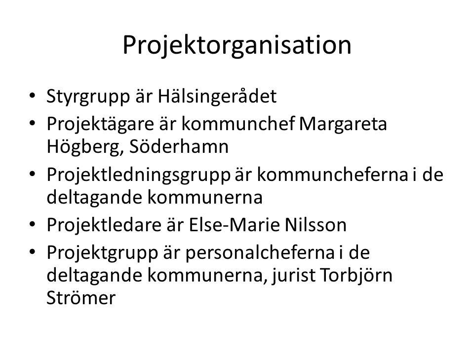 Projektorganisation • Styrgrupp är Hälsingerådet • Projektägare är kommunchef Margareta Högberg, Söderhamn • Projektledningsgrupp är kommuncheferna i
