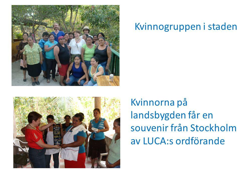 År 2011-2013 Kvinnogrupperna i El Salvador • Tre delprojekt efter kvinnornas prioriteringar: 1.Learning by doing (ekologi, miljö, hållbarhet, självförsörjning, bättre kost och näring, ökad hälsa)