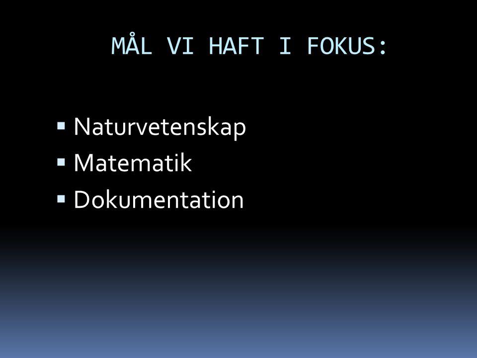 MÅL VI HAFT I FOKUS:  Naturvetenskap  Matematik  Dokumentation