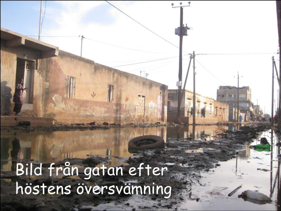 Bild från gatan efter höstens översvämning