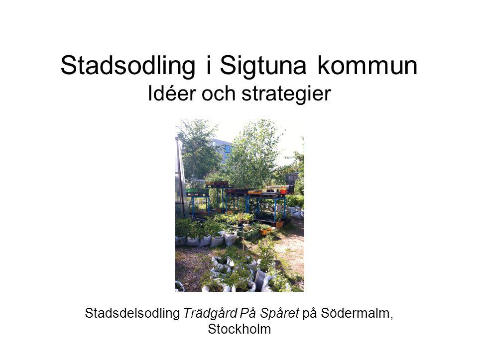 Stadsodling i Sigtuna kommun Idéer och strategier Stadsdelsodling Trädgård På Spåret på Södermalm, Stockholm