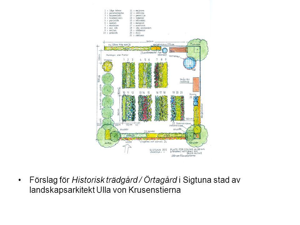 •Förslag för Historisk trädgård / Örtagård i Sigtuna stad av landskapsarkitekt Ulla von Krusenstierna