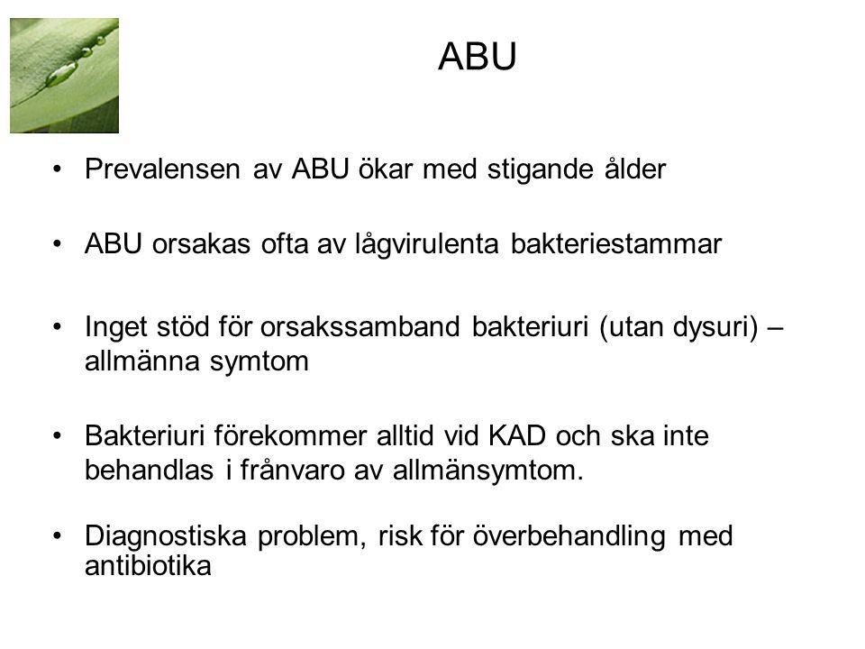 ABU •Prevalensen av ABU ökar med stigande ålder •ABU orsakas ofta av lågvirulenta bakteriestammar •Inget stöd för orsakssamband bakteriuri (utan dysuri) – allmänna symtom •Bakteriuri förekommer alltid vid KAD och ska inte behandlas i frånvaro av allmänsymtom.