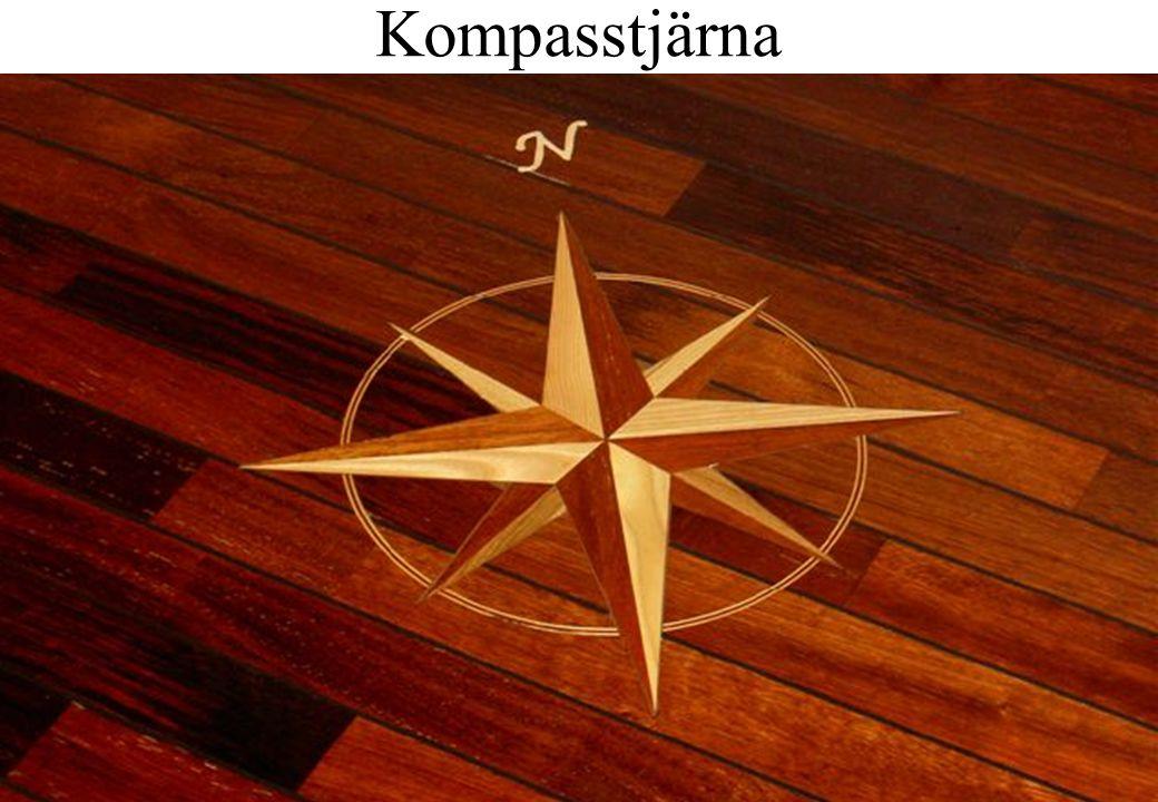 20 Kompasstjärna