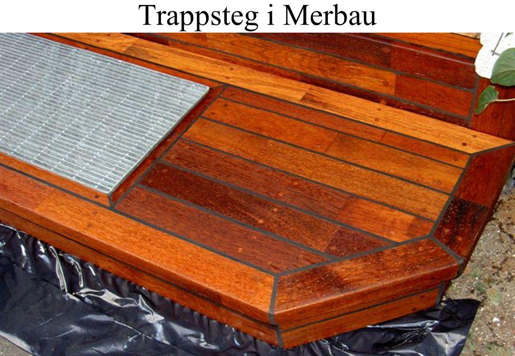 27 Trappsteg i Merbau