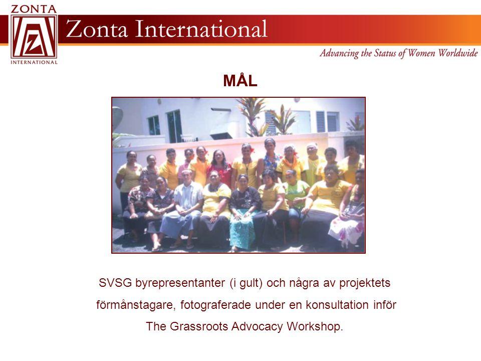 MÅL SVSG byrepresentanter (i gult) och några av projektets förmånstagare, fotograferade under en konsultation inför The Grassroots Advocacy Workshop.