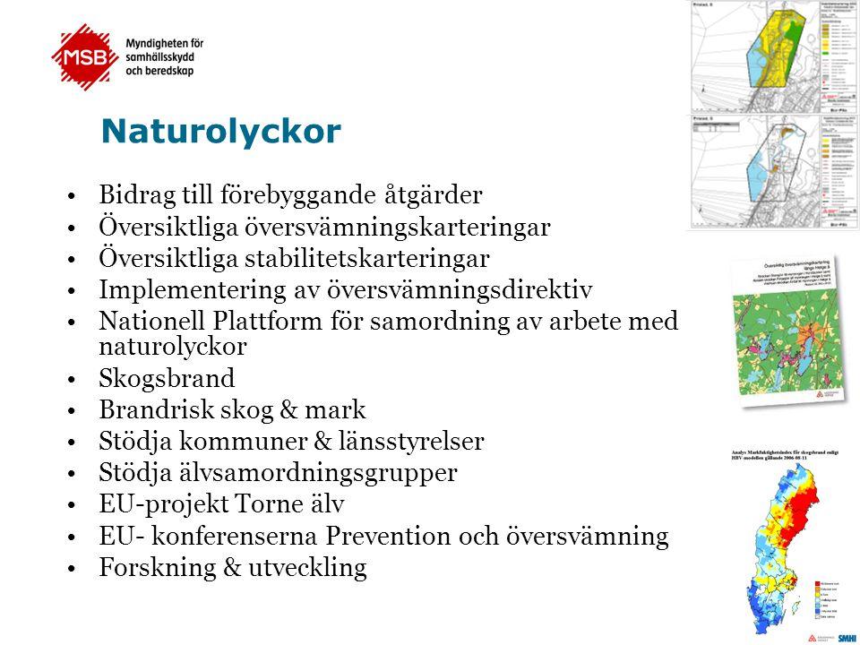 Naturolyckor •Bidrag till förebyggande åtgärder •Översiktliga översvämningskarteringar •Översiktliga stabilitetskarteringar •Implementering av översvämningsdirektiv •Nationell Plattform för samordning av arbete med naturolyckor •Skogsbrand •Brandrisk skog & mark •Stödja kommuner & länsstyrelser •Stödja älvsamordningsgrupper •EU-projekt Torne älv •EU- konferenserna Prevention och översvämning •Forskning & utveckling