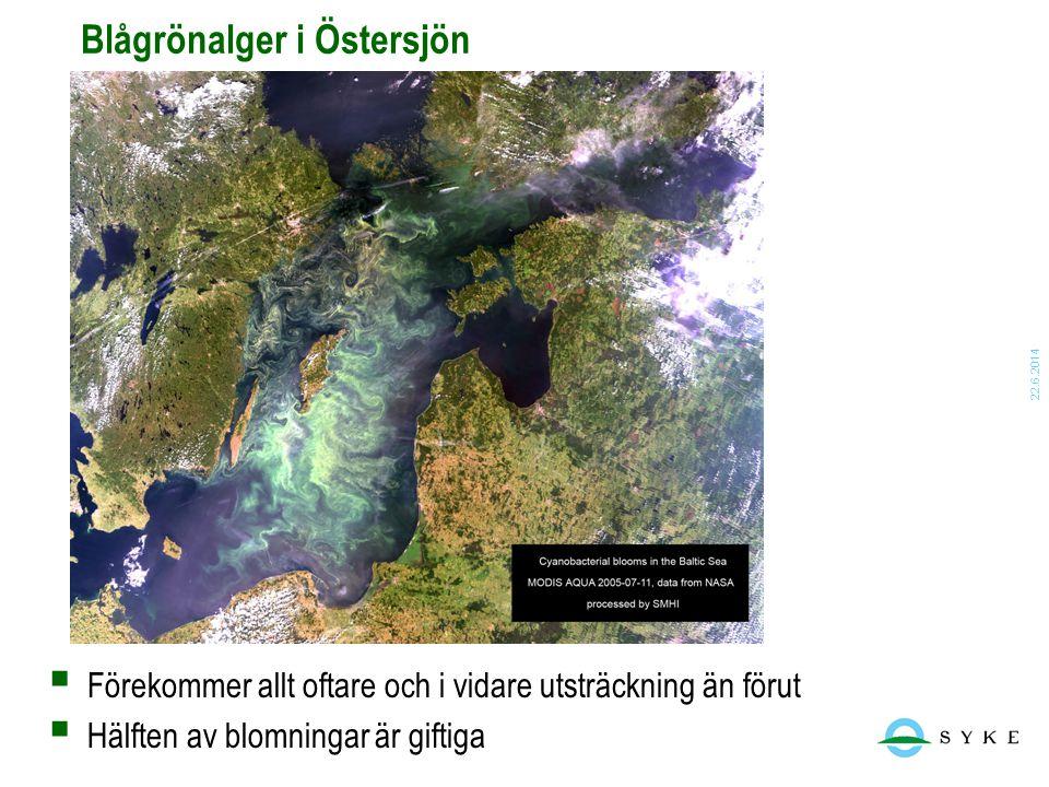 22.6.2014 Blågrönalger i Östersjön  Förekommer allt oftare och i vidare utsträckning än förut  Hälften av blomningar är giftiga Källa: HELCOM