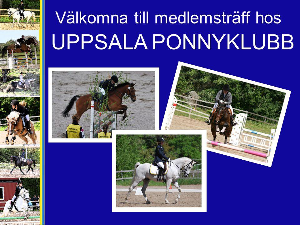 Välkomna till medlemsträff hos UPPSALA PONNYKLUBB