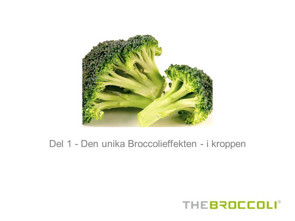 Del 1 - Den unika Broccolieffekten - i kroppen