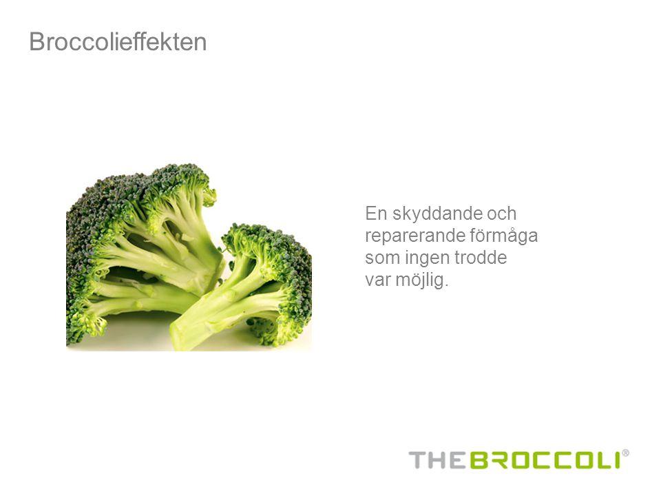 Broccolieffekten En skyddande och reparerande förmåga som ingen trodde var möjlig.