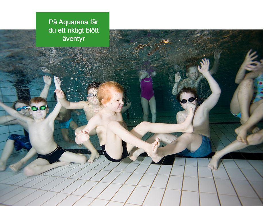 På Aquarena får du ett riktigt blött äventyr