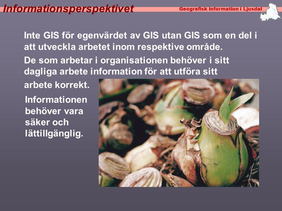 Geografisk information i Ljusdal Informationsperspektivet Inte GIS för egenvärdet av GIS utan GIS som en del i att utveckla arbetet inom respektive område.