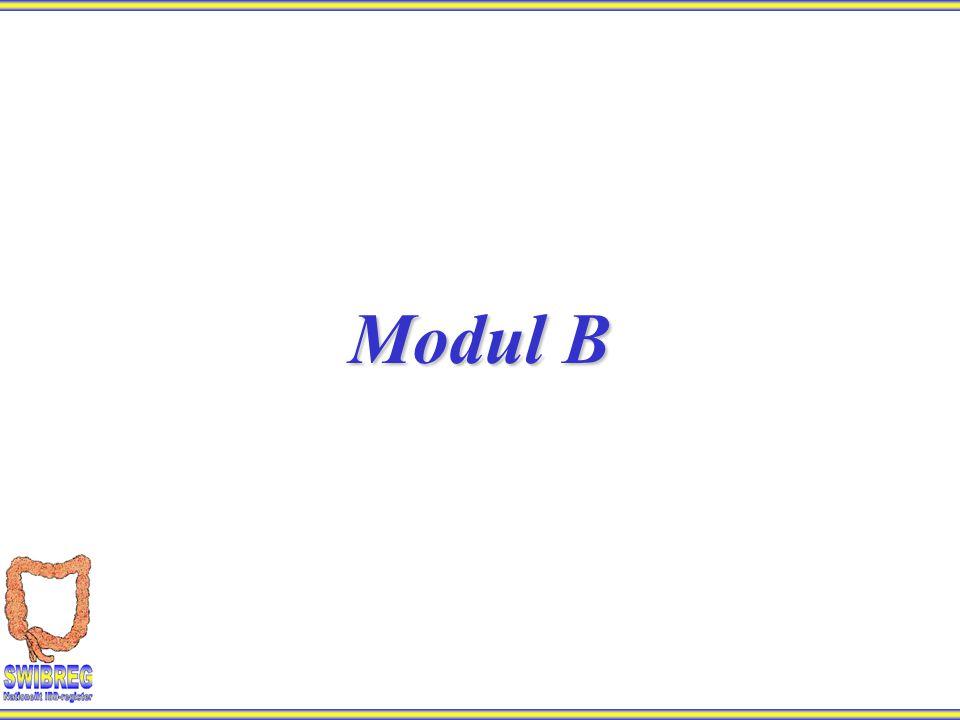 Modul B