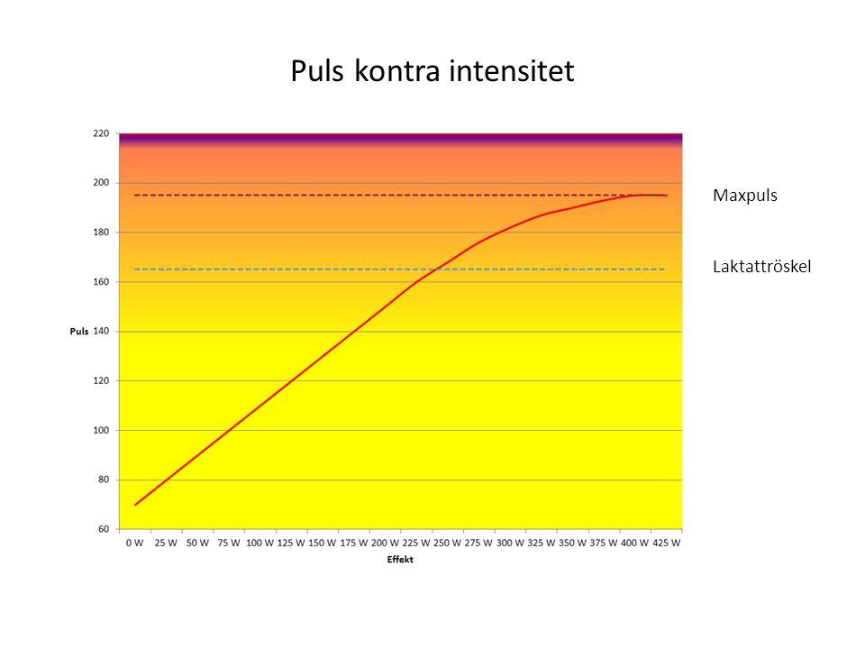 Puls kontra intensitet Laktattröskel Maxpuls