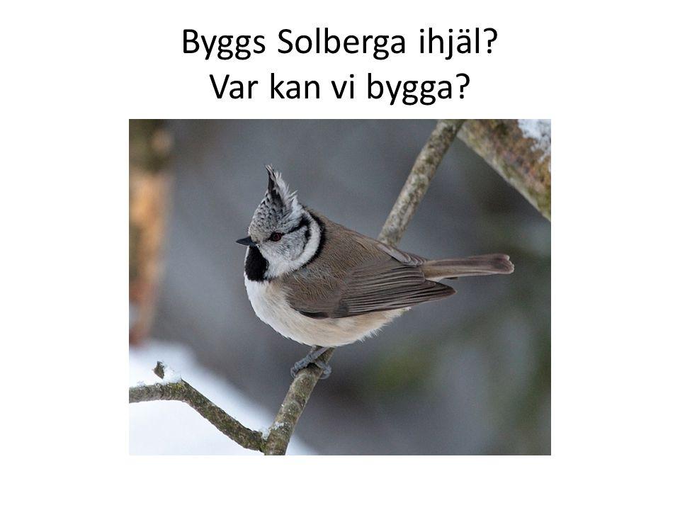 Byggs Solberga ihjäl? Var kan vi bygga?