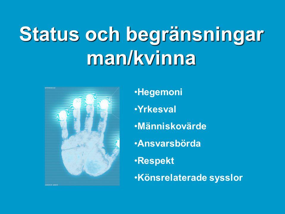 Status och begränsningar man/kvinna •Hegemoni •Yrkesval •Människovärde •Ansvarsbörda •Respekt •Könsrelaterade sysslor