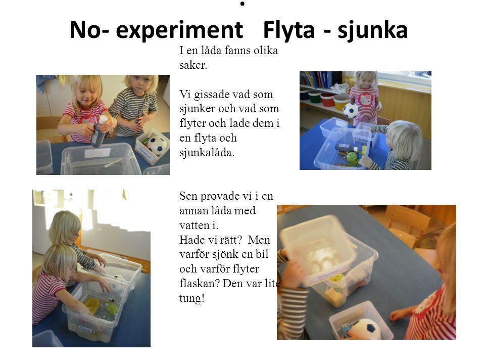 . No- experiment Flyta - sjunka I en låda fanns olika saker. Vi gissade vad som sjunker och vad som flyter och lade dem i en flyta och sjunkalåda. Sen
