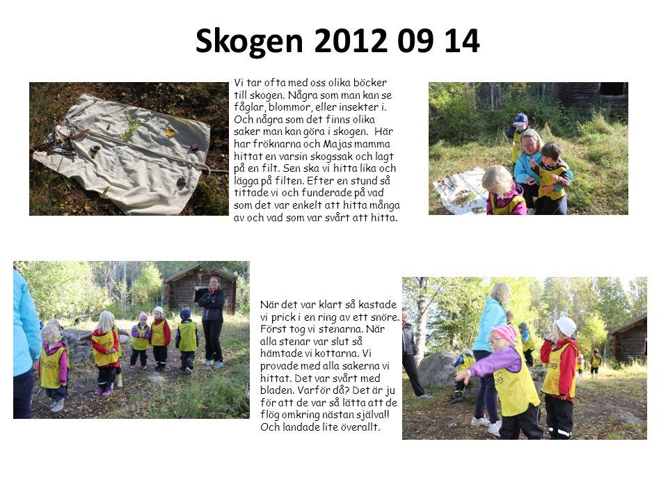 Skogen 2012 09 14 När det var klart så kastade vi prick i en ring av ett snöre. Först tog vi stenarna. När alla stenar var slut så hämtade vi kottarna
