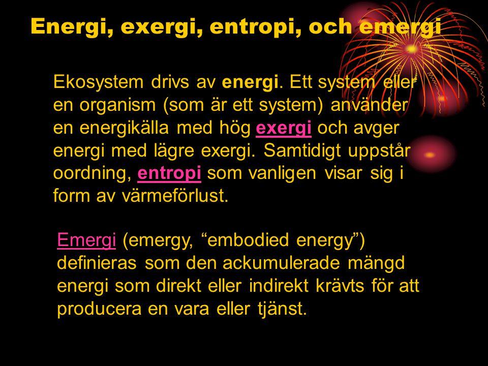 Energi, exergi, entropi, och emergi Ekosystem drivs av energi.