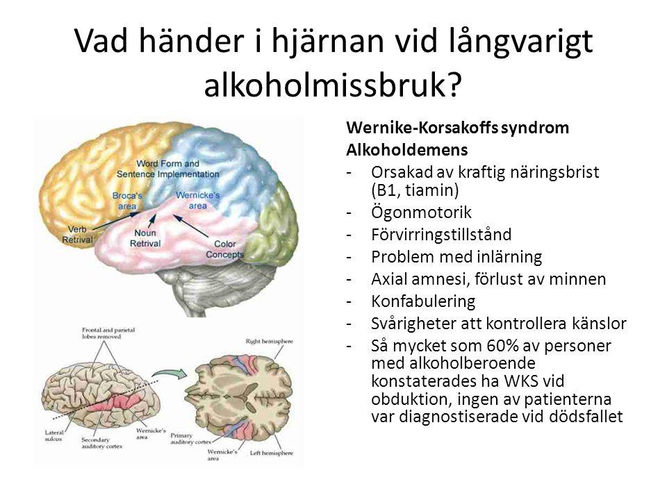 Vad händer i hjärnan vid långvarigt alkoholmissbruk? Wernike-Korsakoffs syndrom Alkoholdemens -Orsakad av kraftig näringsbrist (B1, tiamin) -Ögonmotor