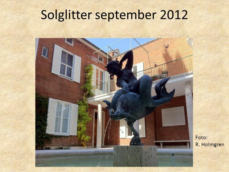 Solglitter september 2012 Foto: R. Holmgren