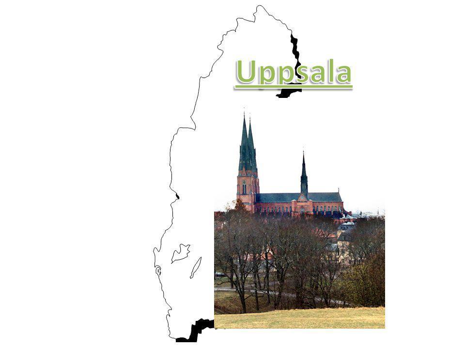 • Ligger i Uppsala län • 128 409 invånare • Ärkebiskopssäte