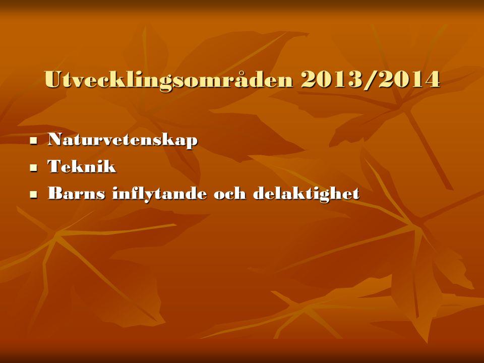 Fortbildning 2013/2014  Naturvetenskap och teknik  Individuell utbildning inom ovanstående områden  Pedagogisk dokumentation