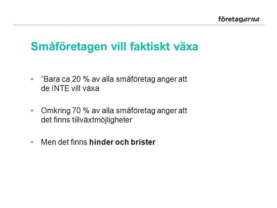 Med småföretagen lyfter Sverige