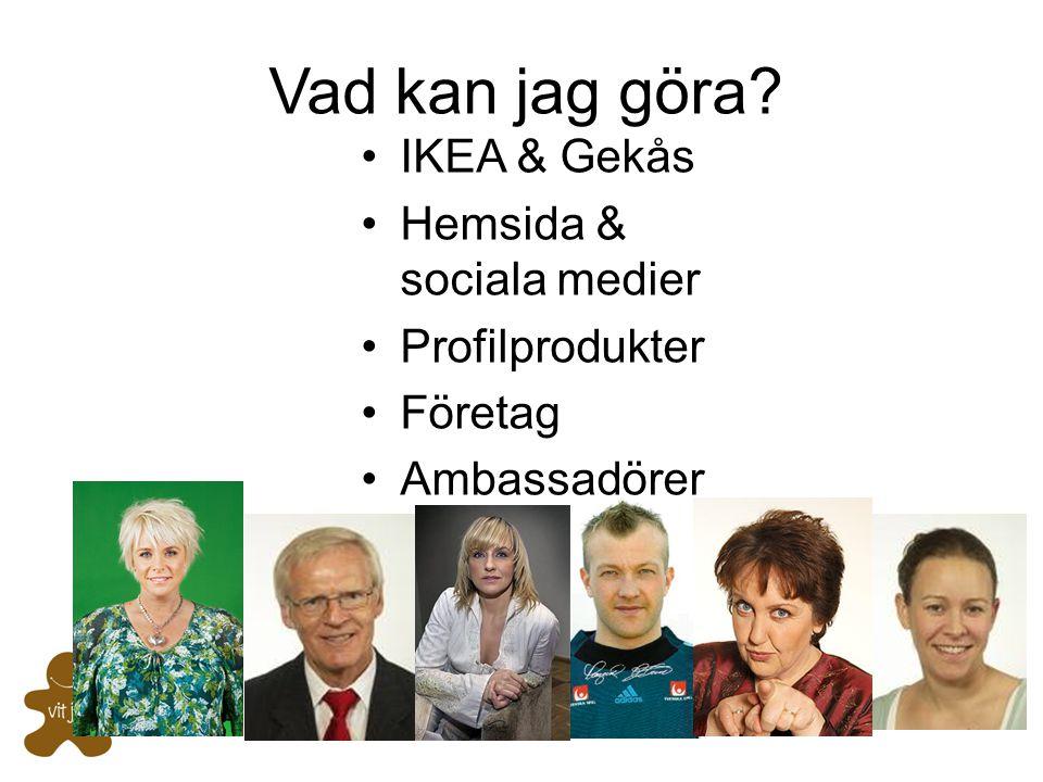 Vad kan jag göra? •IKEA & Gekås •Hemsida & sociala medier •Profilprodukter •Företag •Ambassadörer