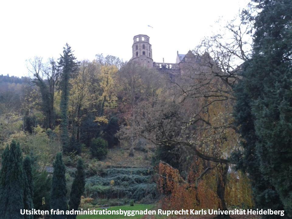 Utsikten från administrationsbyggnaden Ruprecht Karls Universität Heidelberg