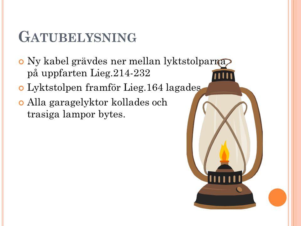 G ATUBELYSNING Ny kabel grävdes ner mellan lyktstolparna på uppfarten Lieg.214-232 Lyktstolpen framför Lieg.164 lagades Alla garagelyktor kollades och trasiga lampor bytes.