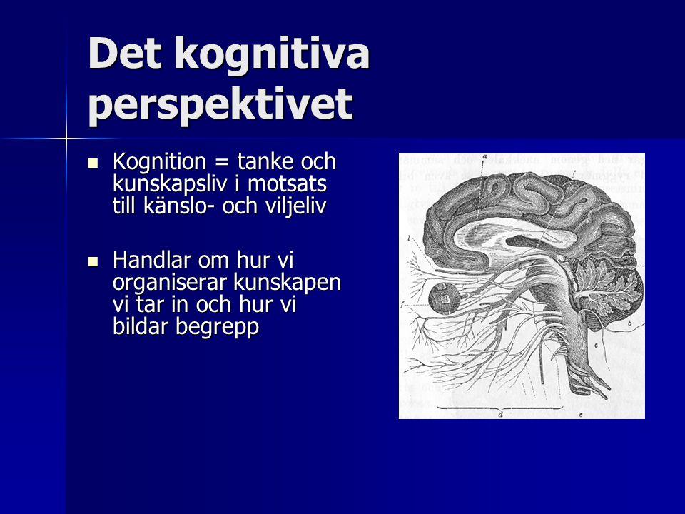 Det kognitiva perspektivet  Kognition = tanke och kunskapsliv i motsats till känslo- och viljeliv  Handlar om hur vi organiserar kunskapen vi tar in